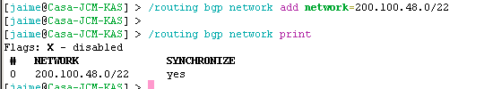 routeing-bgp-network