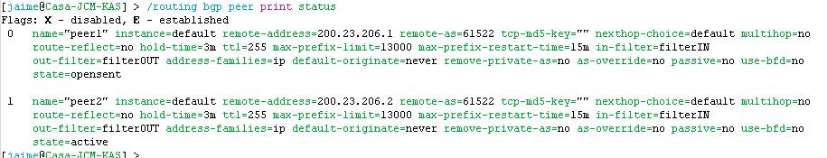 routing-bgp-print-status